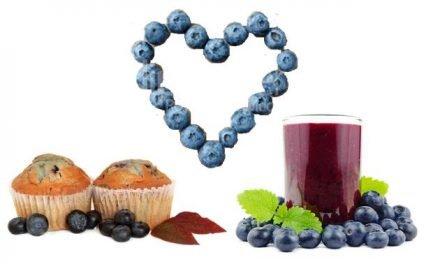 Biodisponibilidad y efectos beneficiosos de los arándanos incorporados a alimentos procesados sobre factores de riesgo a nivel vascular