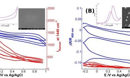 Desarrollo de un nuevo nanomaterial híbrido con aplicaciones electrocatalíticas