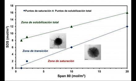 Estudio del proceso de solubilización de niosomas de Span 80 por adición de SDS