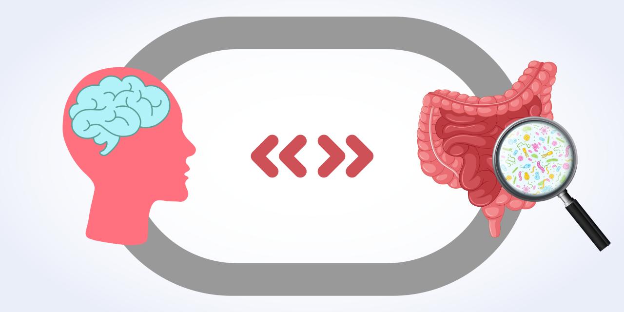 ¿Puede nuestro intestino condicionar nuestros pensamientos?