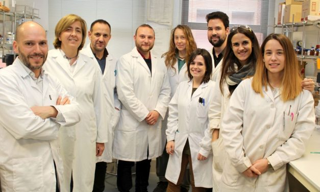 Identificadas nuevas moléculas que inducen la muerte de células madre cancerosas de cáncer de pulmón