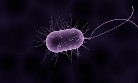 El efecto bactericida de los clústeres atómicos de plata (Ag3) con organismos vivos