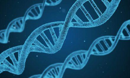 Agrupaciones subnanométricas de átomos de plata (Ag2 y Ag3): síntesis, caracterización e interacción con ADN