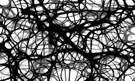 Un modelo de conjunto de redes neuronales artificiales permite la identificación de patrones en grandes volúmenes de datos de forma independiente a su escala
