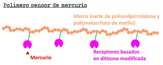Figura 3. Representación esquemática de un polímero sensor.
