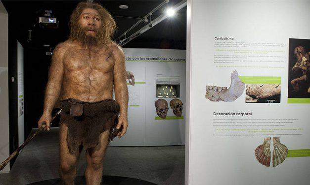 ¿Y si te digo que dentro de ti hay un Neandertal?